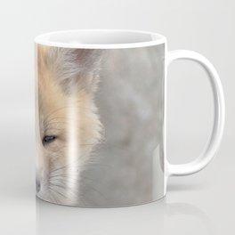 Watercolor Fox, Red Fox 102, Union Reservoir, Boulder Coffee Mug
