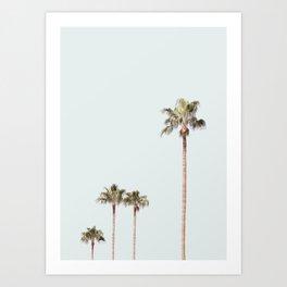 California Palms on pastel blue background Art Print