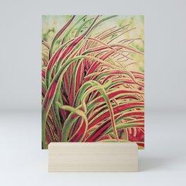 Green & red succulent. Mini Art Print