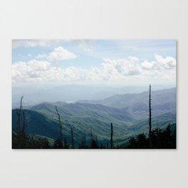 las montañas  Canvas Print