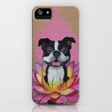 Zen Boston Terrier iPhone (5, 5s) Slim Case