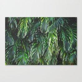 Tropical Foliage Canvas Print