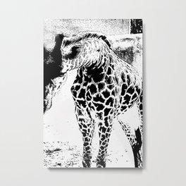 Black n White Giraffe Metal Print