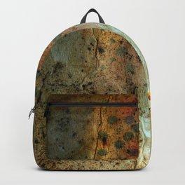 Spark 21 Backpack