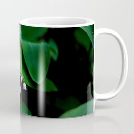 Lily Of the Valley With Large Green Leaves Coffee Mug