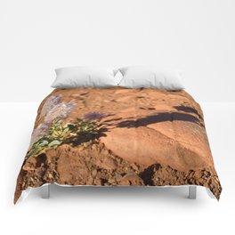 Lavender Bottlebrush in Desert Comforters