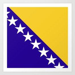 Bosnia and Herzegovina flag emblem Art Print
