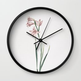 Vintage Painted Lady Illustration Wall Clock