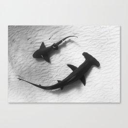 Shark Yin Yang Canvas Print