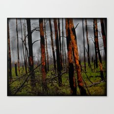 Burnt Forest  Canvas Print