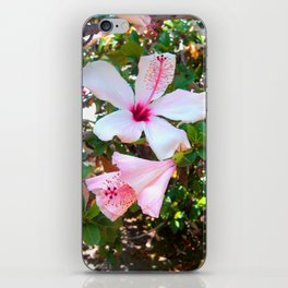 Flirtatiously Pink Hibiscus iPhone Skin