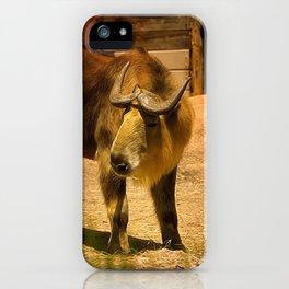 Takin iPhone Case