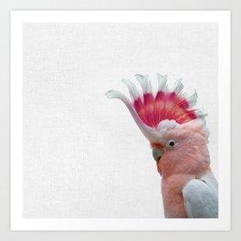 Pink Cockatoo, Prints, Cockatoo Bird, Digital Download, Gallah Wall Art, Printable, Tropical Print, Art Print