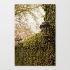 New Orleans - Ivy Garden Wall Canvas Print