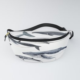 Whales and right whale Fanny Pack