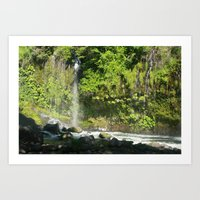 Mossbrea Falls Art Print