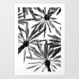 Tropical Darkroom #157 Art Print