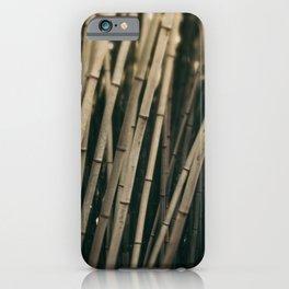 Bamboo Study 3 iPhone Case