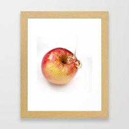 Apple and Honey Framed Art Print
