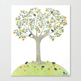 Orange Tree and Blackbirds Canvas Print