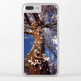 Frosty Clear iPhone Case