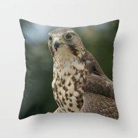 hawk Throw Pillows featuring Hawk by Herzensdinge