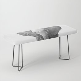 Black and White Baby Elephant Bench