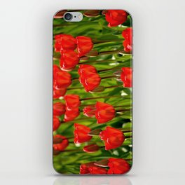 Rote Tulpen iPhone Skin
