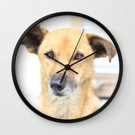 Floppy Ear Puppy Wall Clock