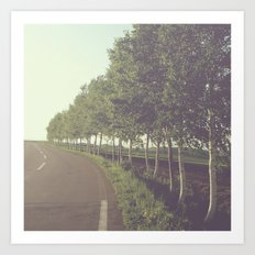 roadside trees Art Print