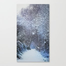 Woodland whiteout Canvas Print