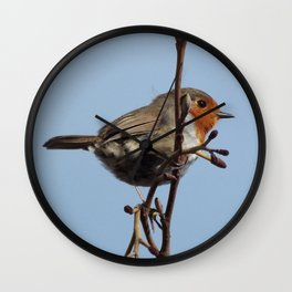 Beautiful robin Wall Clock