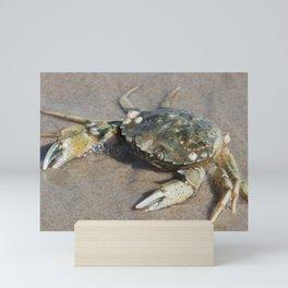 Beach Crab Mini Art Print