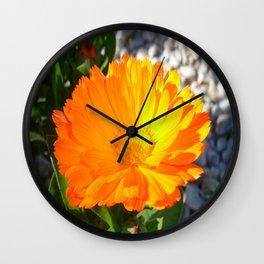 Bright Orange Marigold In Bright Sunlight Wall Clock