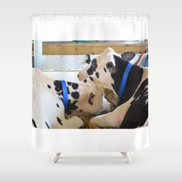 Pair of black and white cows 1 Shower Curtain