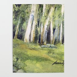 Woodland Landscape Watercolor Vermont Painting Birch Trees Spring Fields Poster