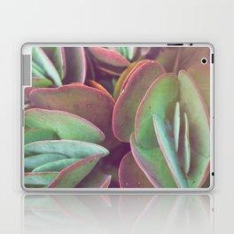 Jade + Pink Laptop & iPad Skin