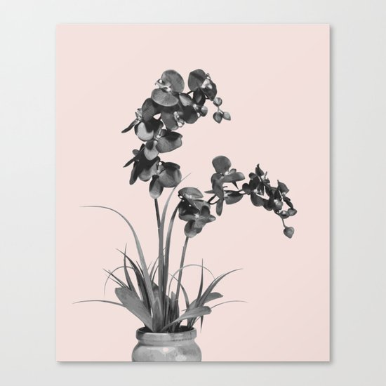 Summer orchid bloom Canvas Print