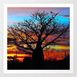 Candy Colour Sunset thru Boab Art Print