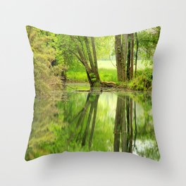 Spring Reflections Throw Pillow