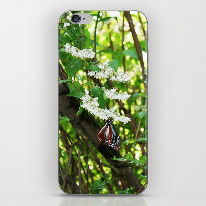 Japanese Butterfly iPhone Skin
