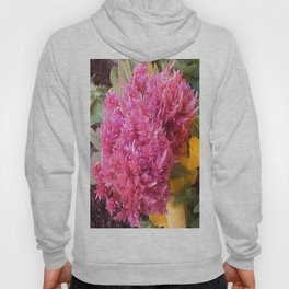 A Pink Celosia Hoody