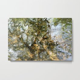 Tree Reflected in Shallow Water Metal Print