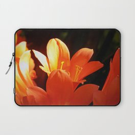 In Bloom Laptop Sleeve
