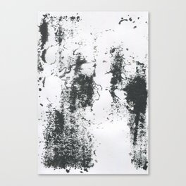 Black/white Canvas Print