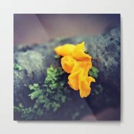 Witches' Butter Metal Print