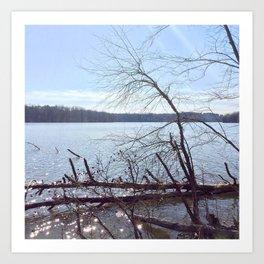 Lake Brandt Art Print