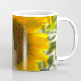 Sunflowers Summer Days Coffee Mug