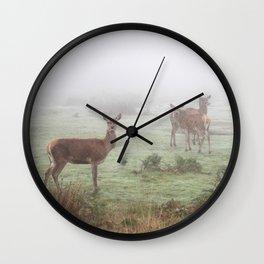 They wonder .. Wall Clock