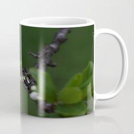 Plum tree flower Coffee Mug